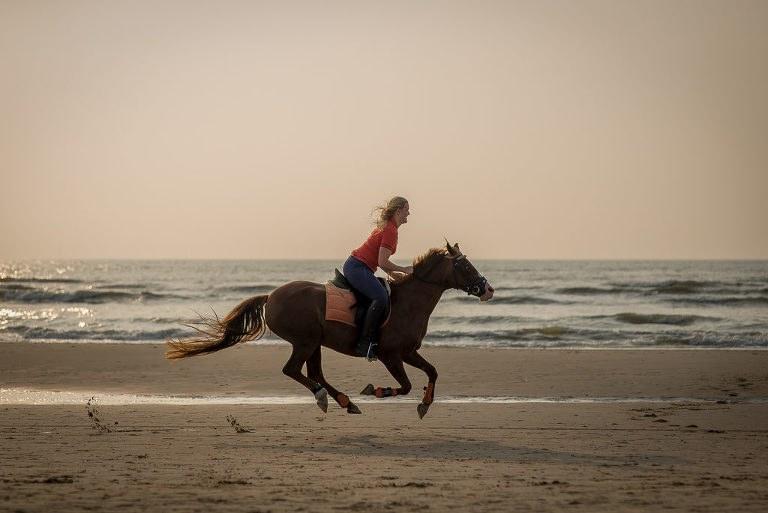 Fotoshoot met paard- Alkmaar- Heerhugowaard-6