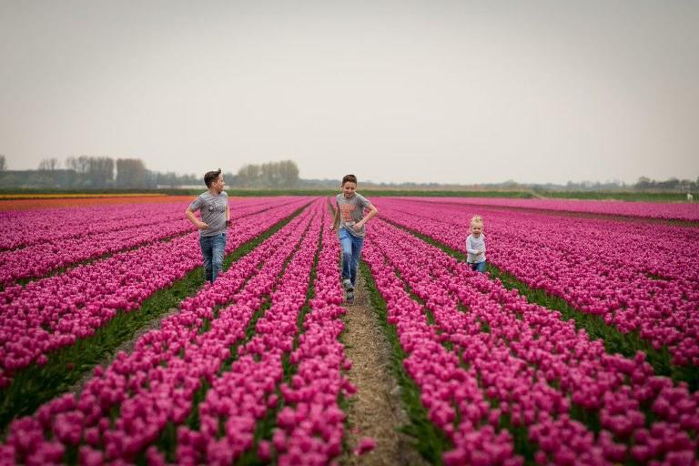 Familie fotoshoot Alkmaar-3