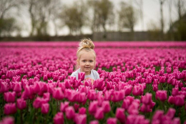 Familie fotoshoot Alkmaar-8